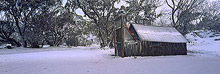Wallaces Hut Photos